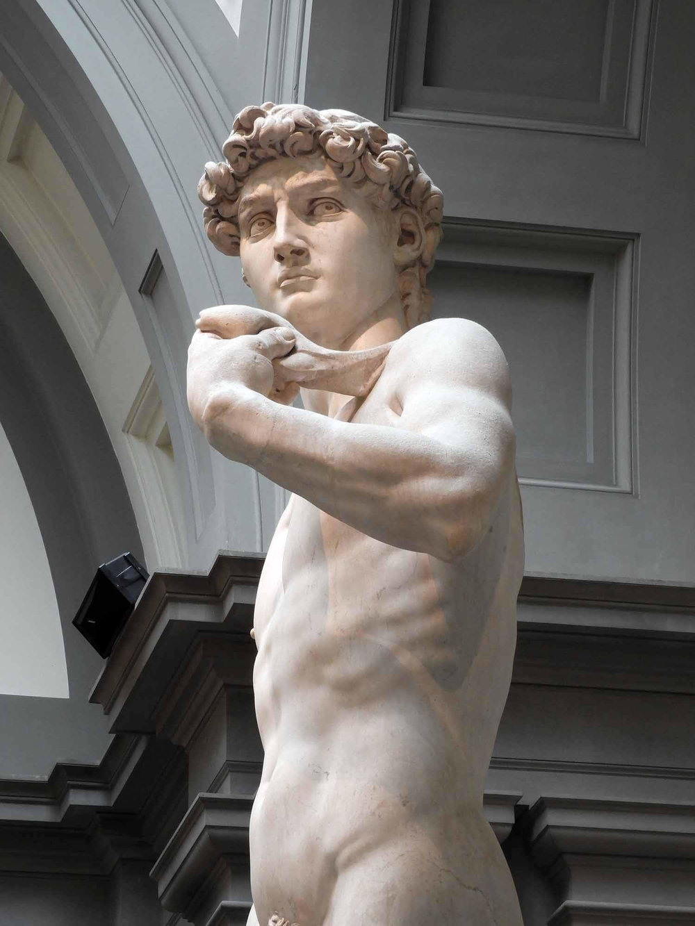 italy-italia-florence-galeria-da-academia-david-statue-side-view.JPG
