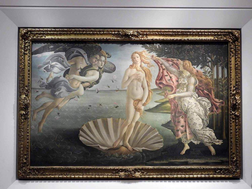 italy-italia-florence-uffizi-museum-painting-venus-birth-shell.JPG