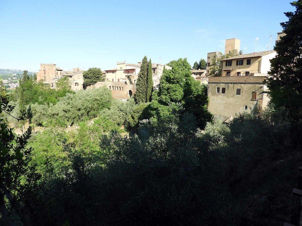 italy-italia-certaldo-old-tuscany-hilltop-town-cypress.JPG
