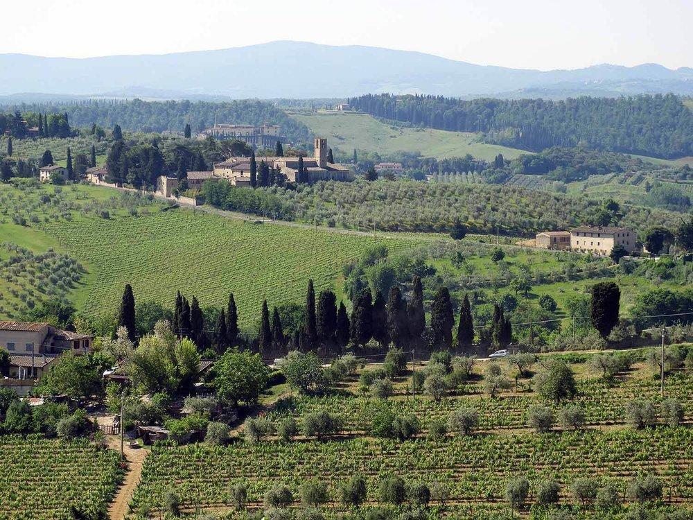 italy-italia-san-gimignano-tuscany-countryside-cypress.JPG
