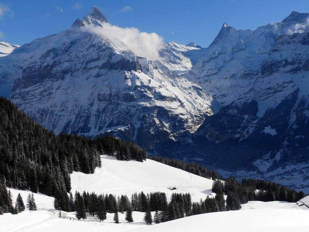 switzerland_grindelwald_worlds_longest_sled_run_ alps_interlaken.JPG