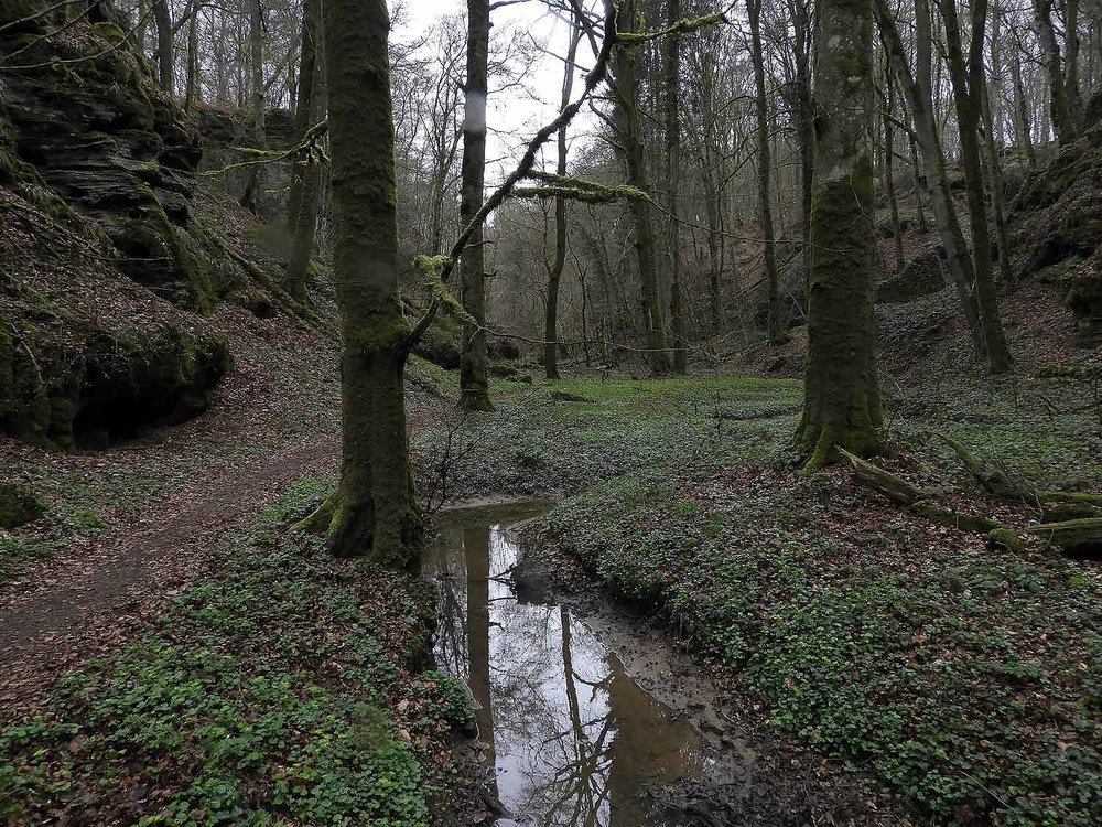luxembourg-hike-hohllay-caves-echternach-little-switzerland-stream.JPG