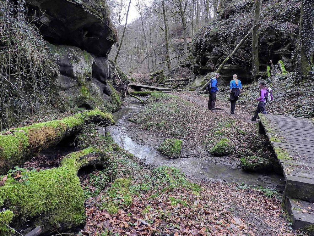 luxembourg-hike-hohllay-caves-echternach-little-switzerland-valley-moss.jpg