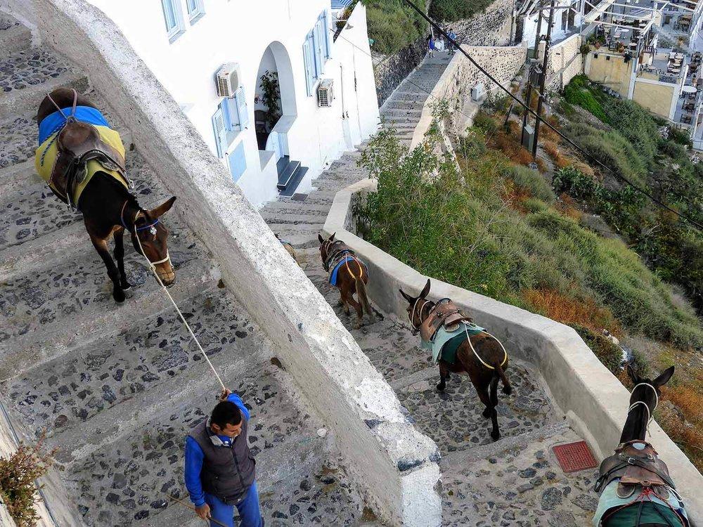 greece-santorini-fira-stairs.jpg