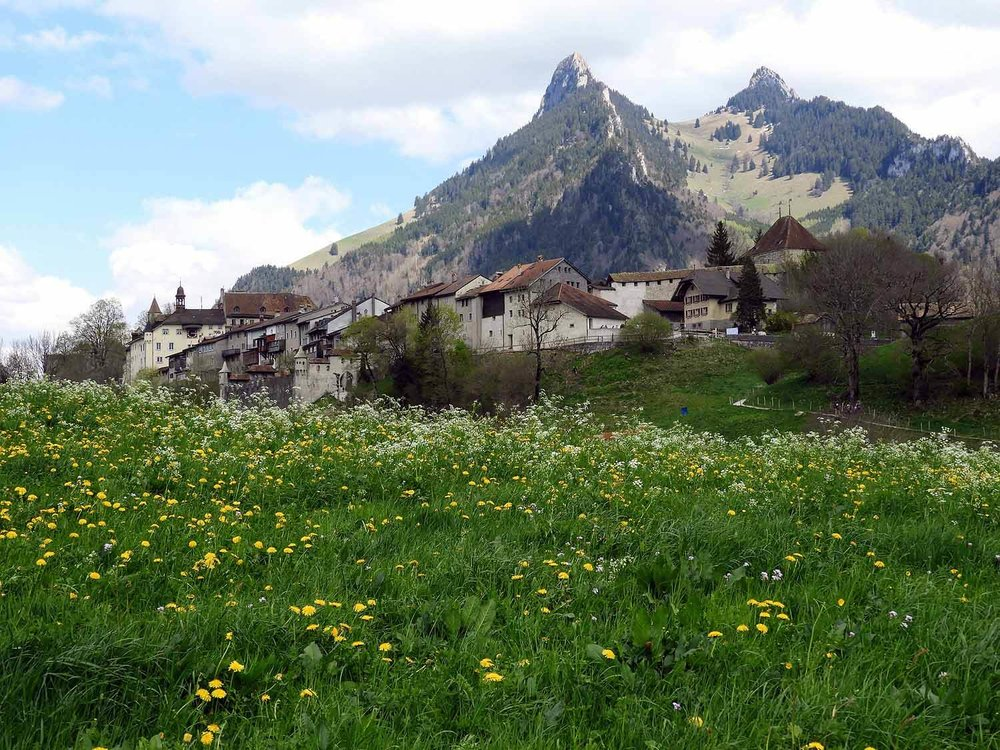 switzerland-grureyes-town-alps.jpg