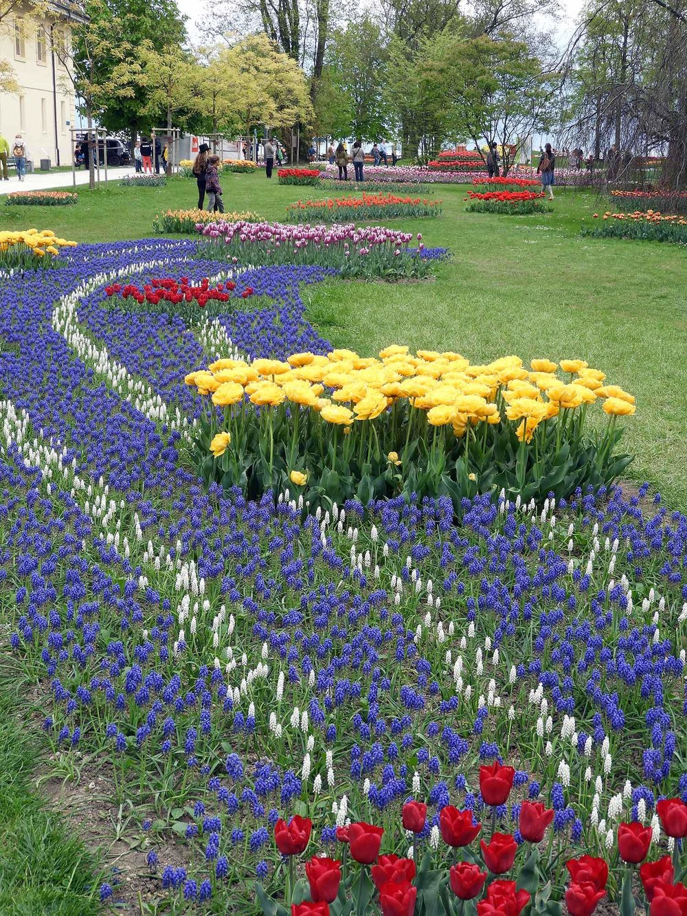 switzerland-luassane-morges-tulip-festival.JPG