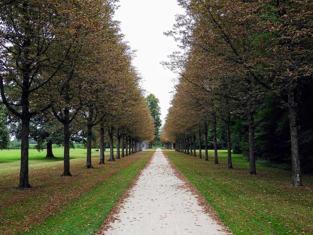 germany-rastatt-schloss-favorite-treelined-road-autumn.jpg