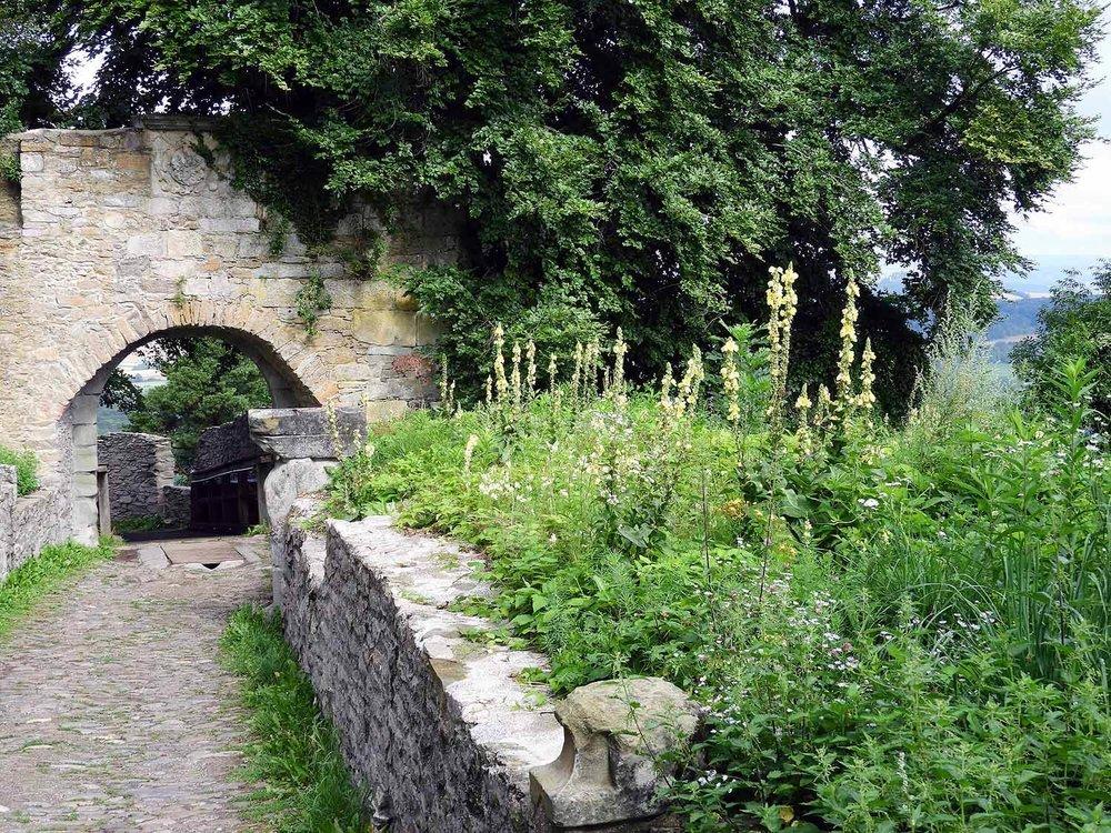 germany-hohentwiel-castle-ruins-arch.jpg