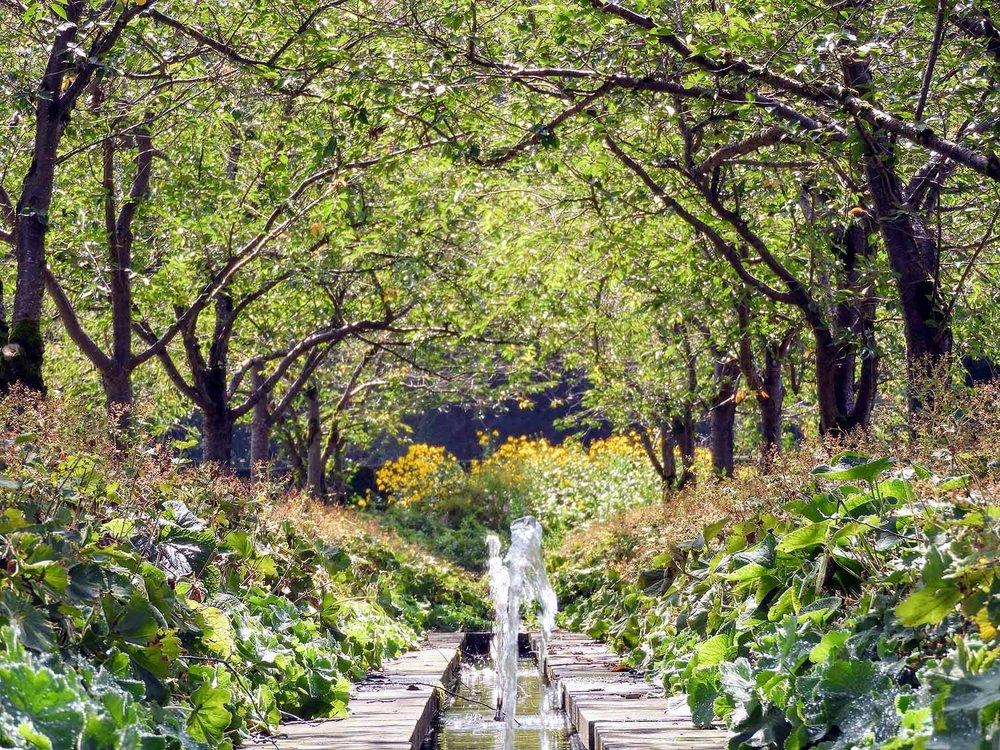 germany-salem-monastery-formal-gardens-fountian.jpg