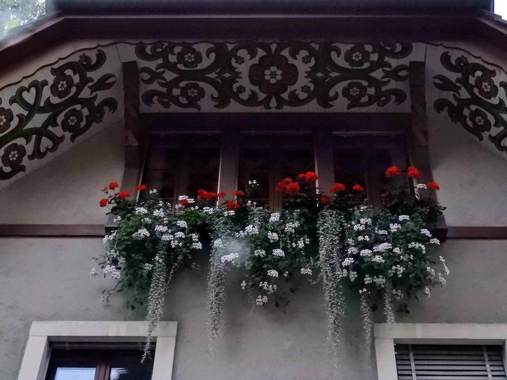 switzeland-aarau-painted-eves.jpg