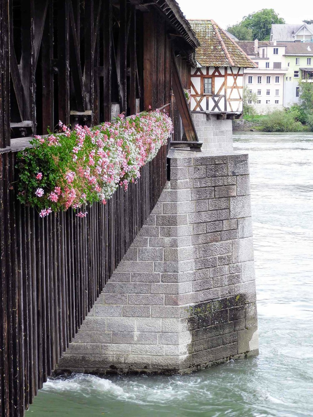 germany-bad-sackingen-rhine-river-historic-bridge-switzerland.jpg