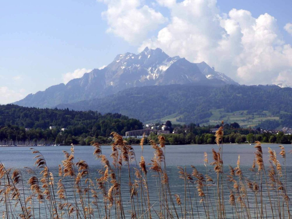 switzerland-lucerne-lake-shore.JPG