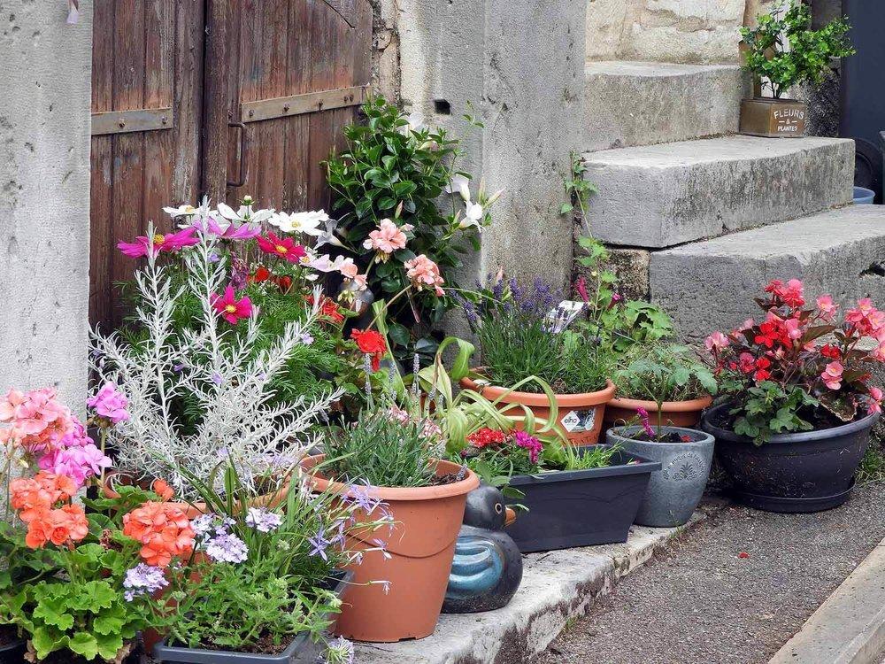 france-gray-street-flowers.JPG