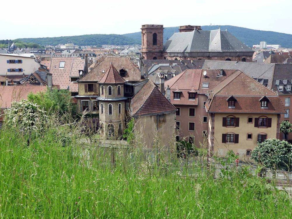 france-belfort-grass-city.JPG