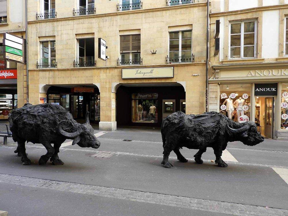 switzerland-neuchatel-water-buffalo-sculptures.JPG