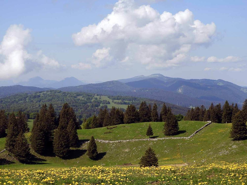 switzerland-cruex-du-van-countryside.JPG
