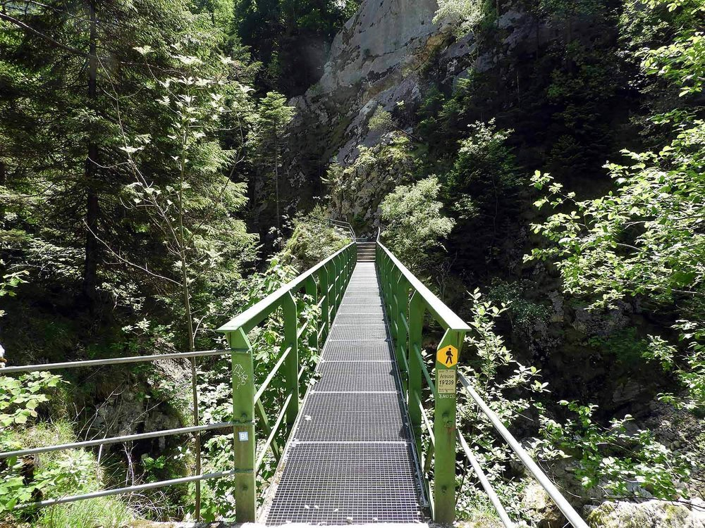 switzerland-saut-pont-brot-hike-walk-hiking-metal-bridge.JPG