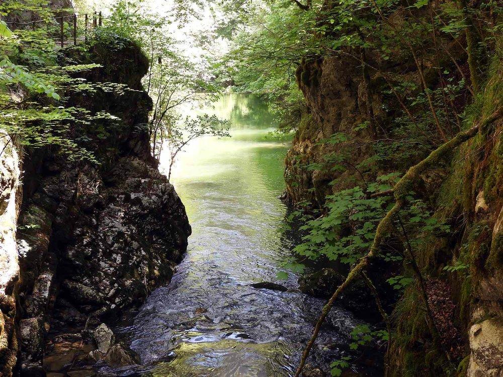 switzerland-saut-pont-brot-hike-walk-hiking-river-canyon.JPG