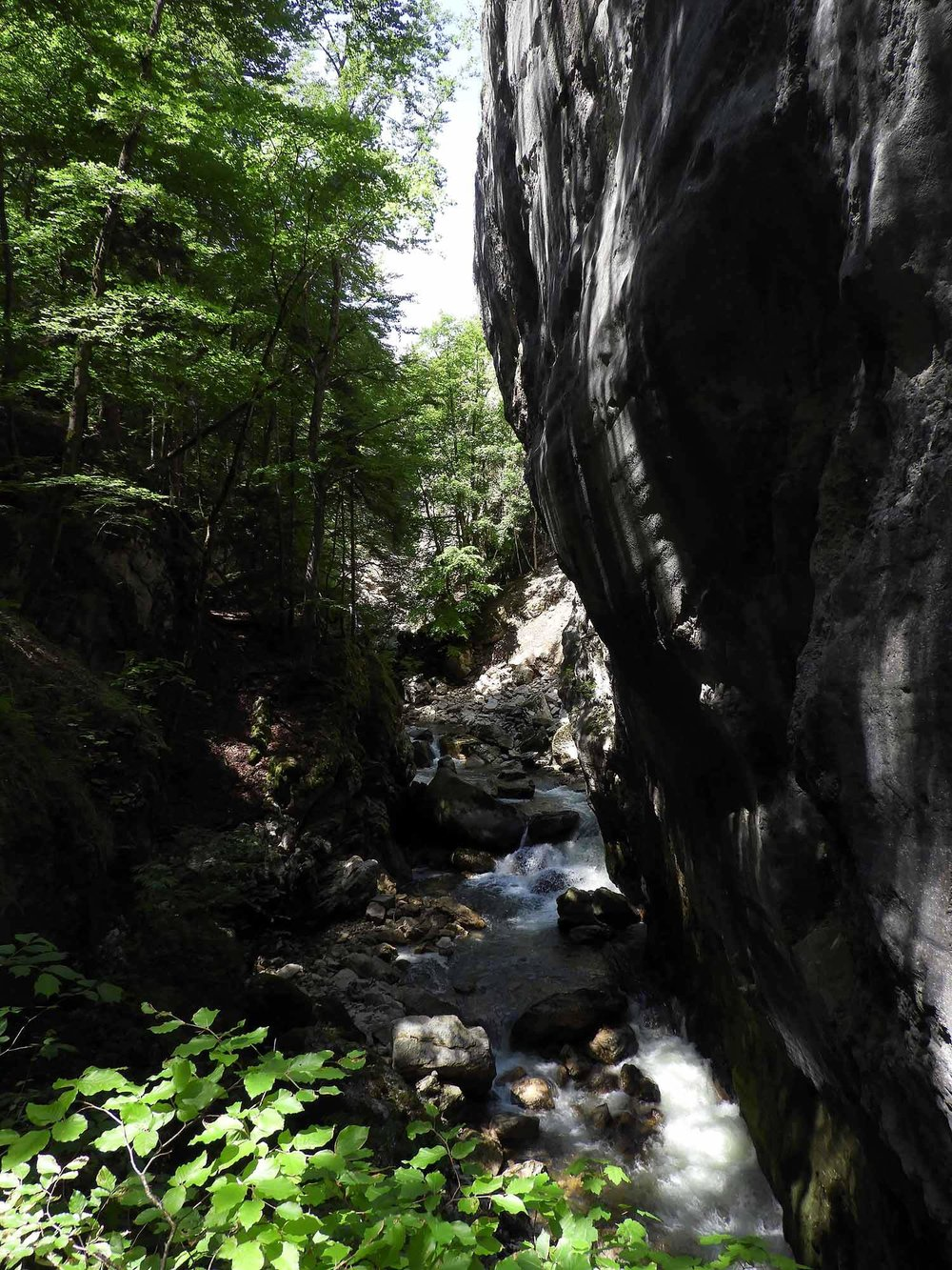 switzerland-saut-pont-brot-hike-walk-hiking-steep-ravine.JPG