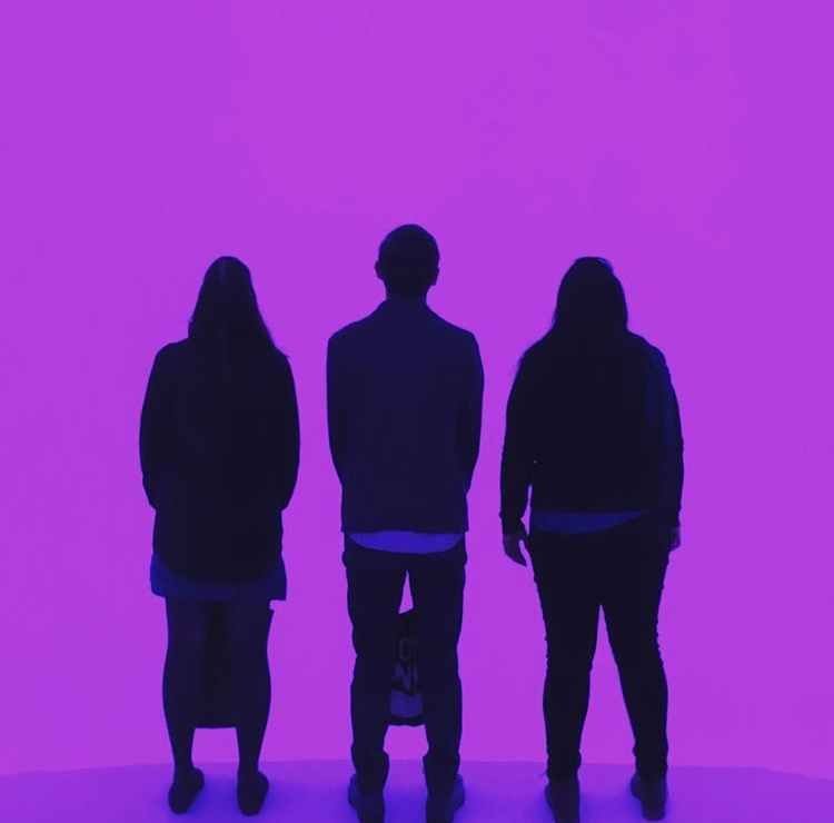 Nisha in the James Turrell art volume with colleagues.