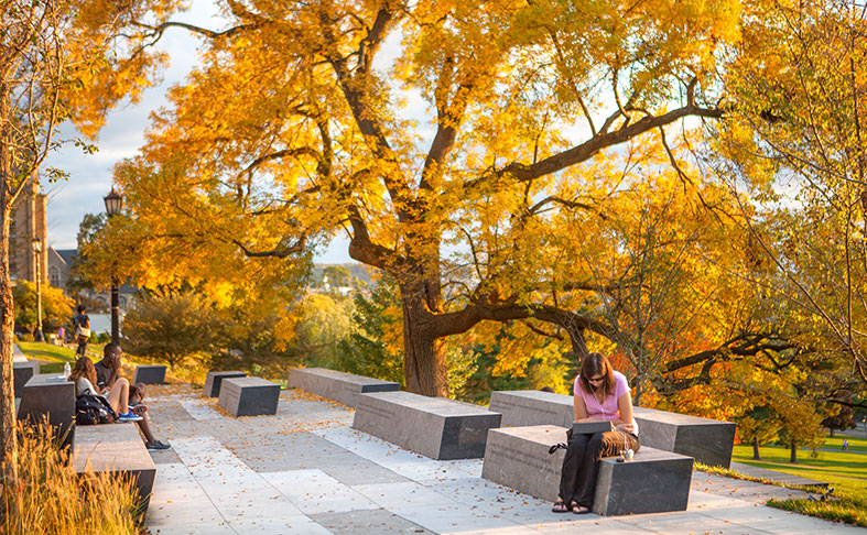 Cornell University, Ithaca, NY