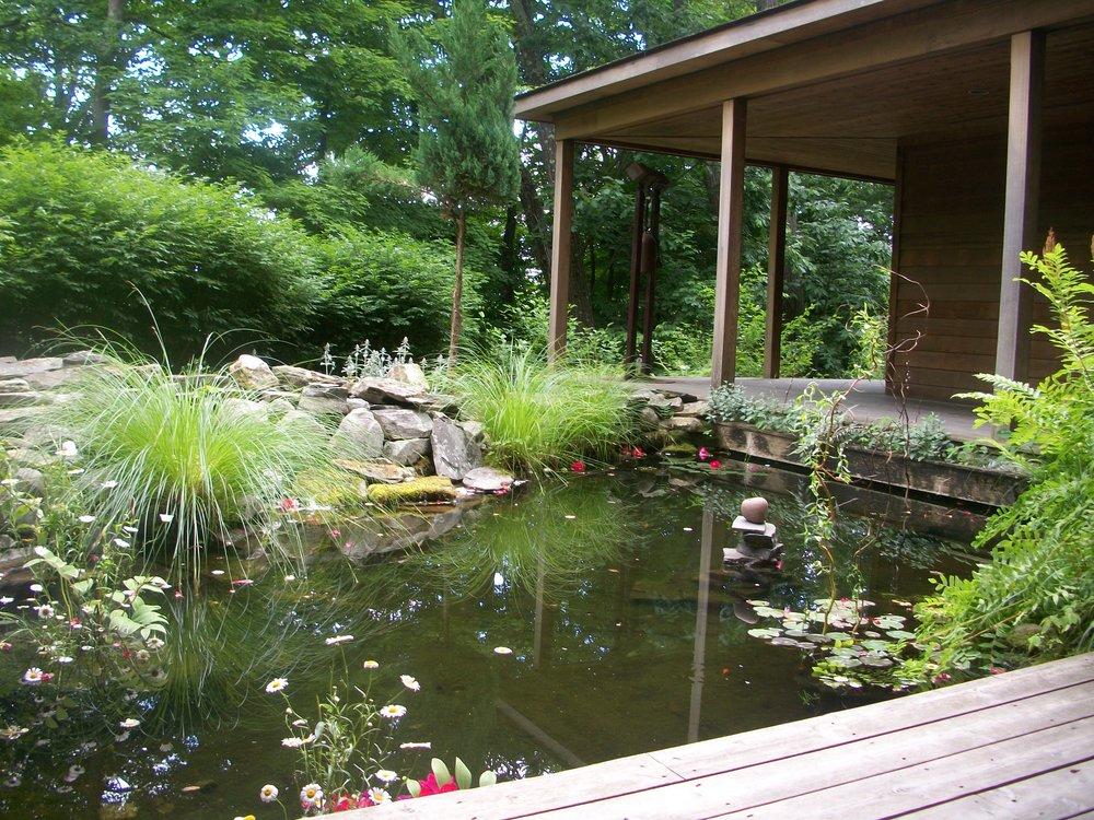 Omega Pond.jpg