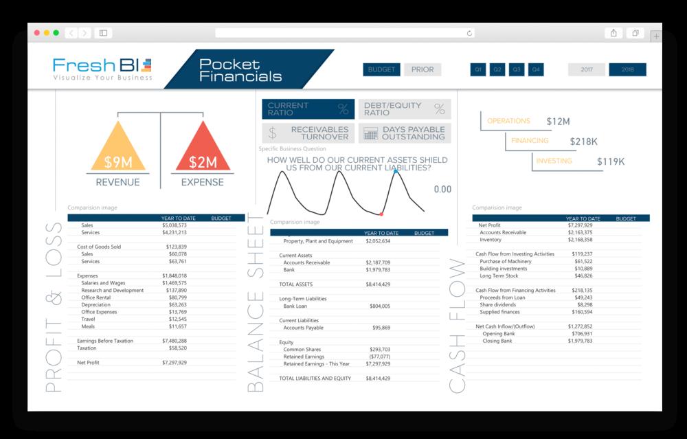 FreshBI - 18-01 Website - Showcase - Pocket Financials.png