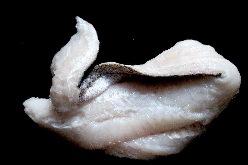 Fresh hake