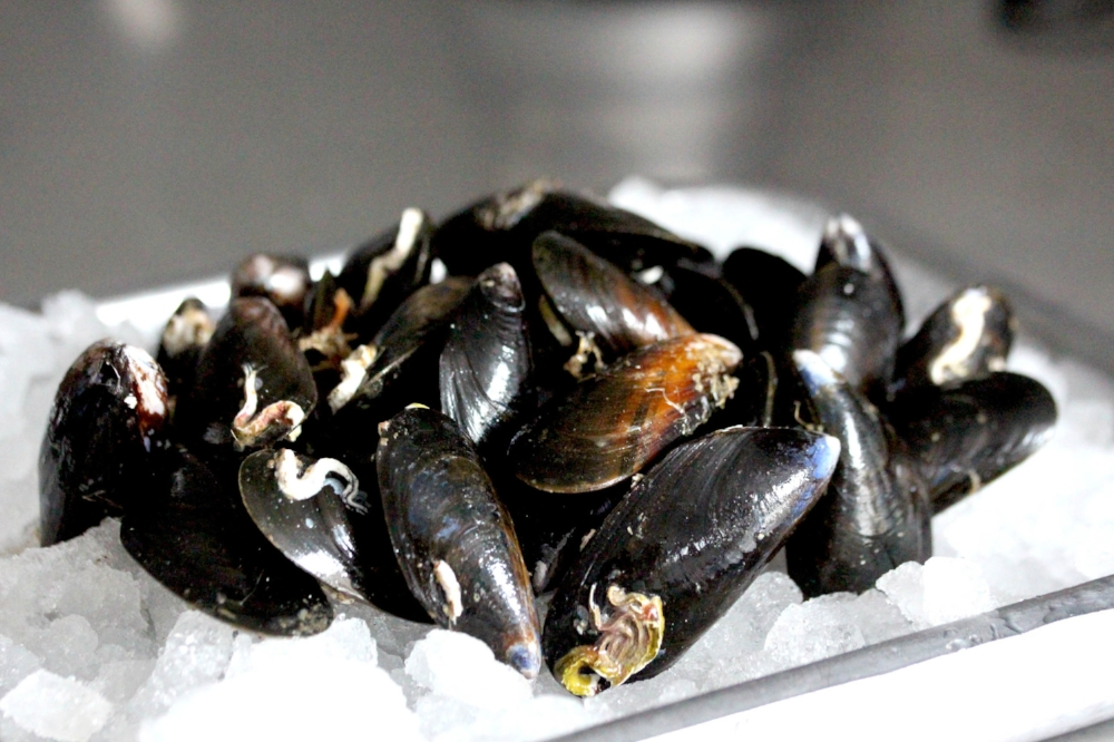 Three ways with fresh mussels