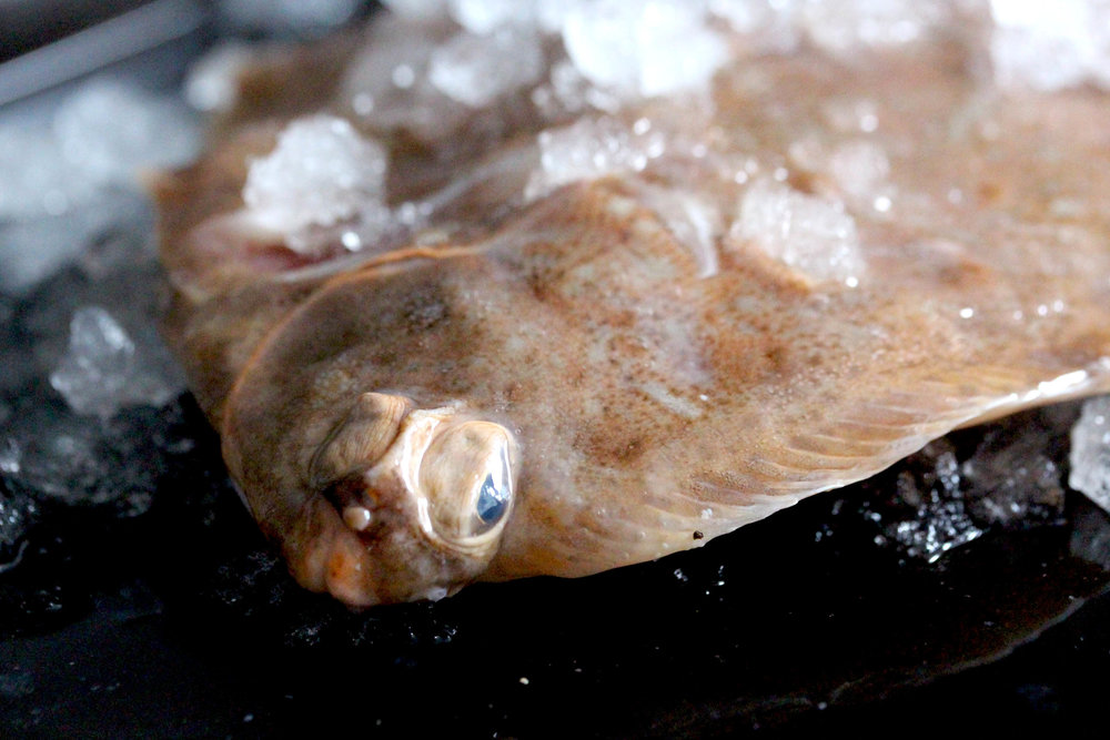Lemon sole is a great alternative to Dover sole