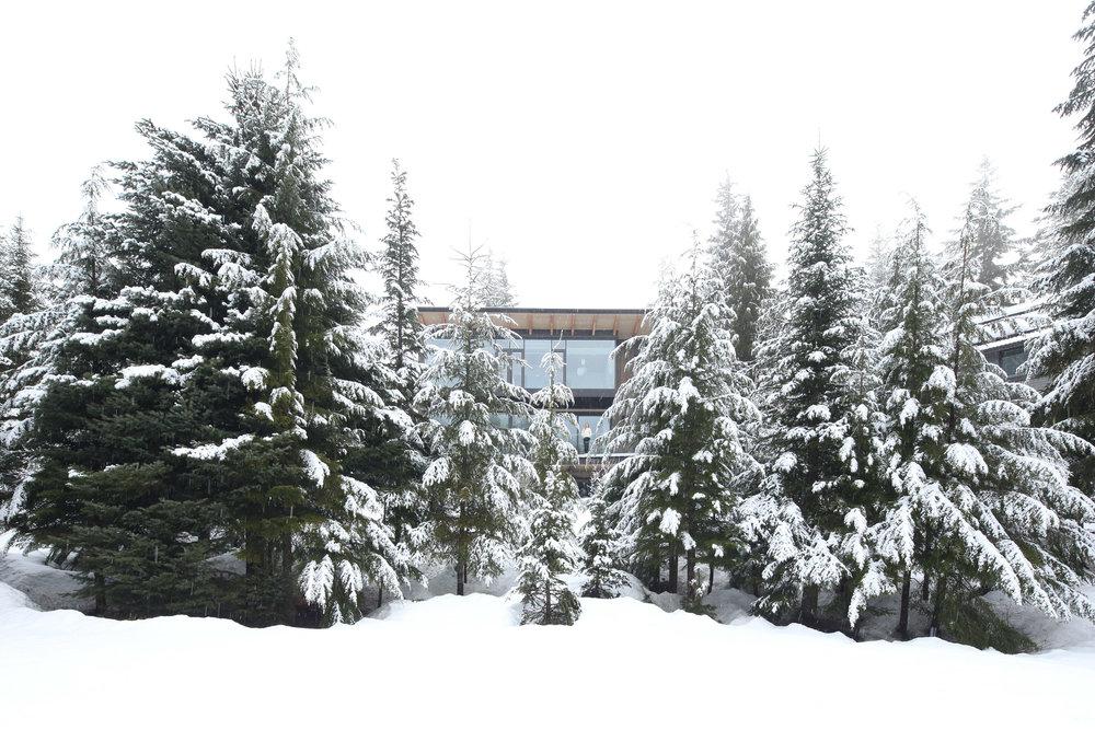 Whistler Residence - Dezeen 2018 -