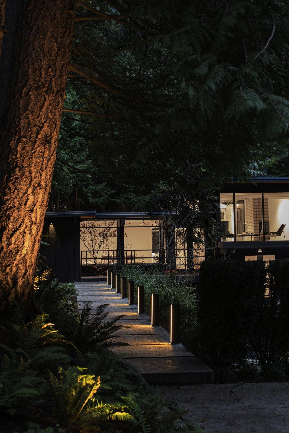 Cypress Falls Residence-Janis Nicolay-5.jpg