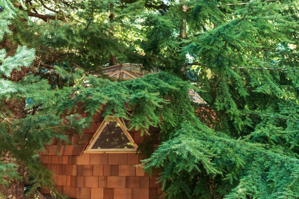 considereddesign-treehouse01.jpg