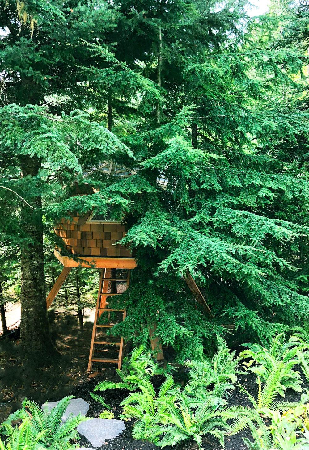 considereddesign-treehouse02.jpg