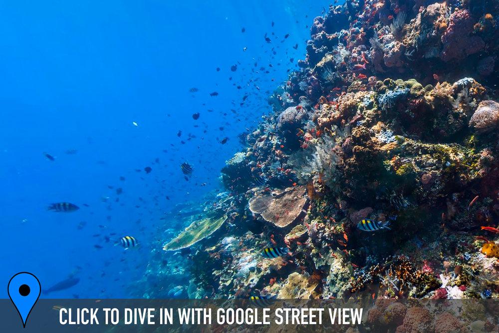 batu bolong, komodo Credit: THE OCEAN AGENCY / XL CATLIN SEAVIEW SURVEY