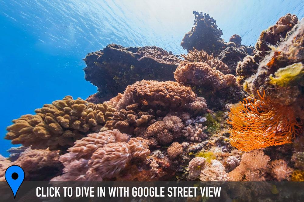 da bai sha, green island, taiwan Credit: THE OCEAN AGENCY / XL CATLIN SEAVIEW SURVEY