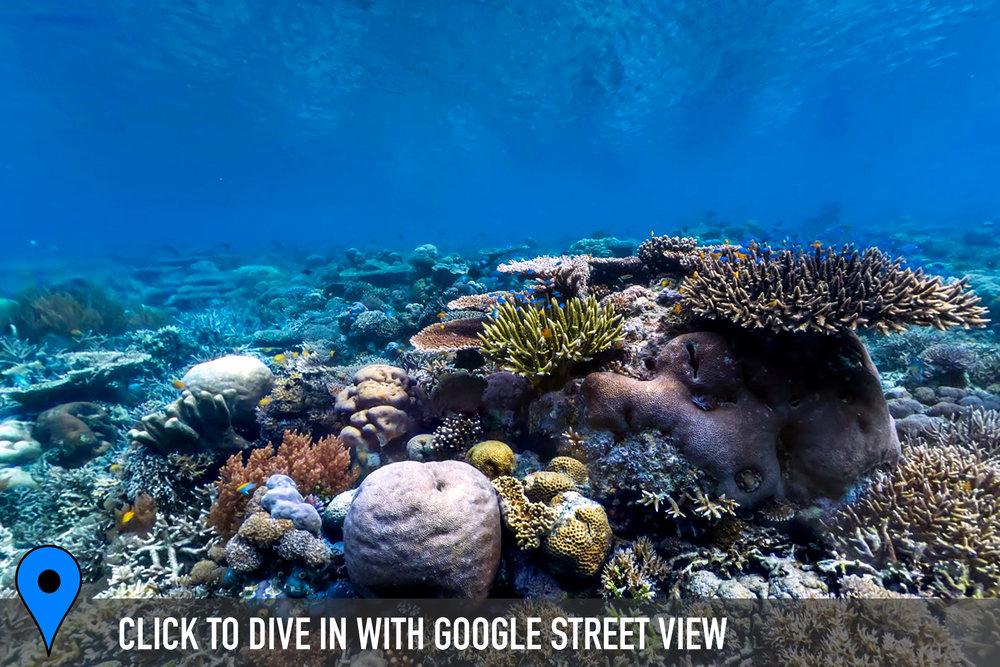 DOWNLOAD   - keruo, raja ampat, indonesia Credit: THE OCEAN AGENCY / XL CATLIN SEAVIEW SURVEY