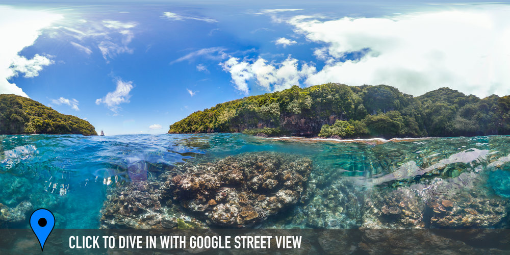 tafeu cove, american samoa Credit: THE OCEAN AGENCY / XL CATLIN SEAVIEW SURVEY