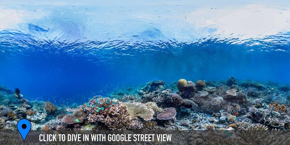 DOWNLOAD   -keuro, raja ampat, indonesia Credit: THE OCEAN AGENCY / XL CATLIN SEAVIEW SURVEY