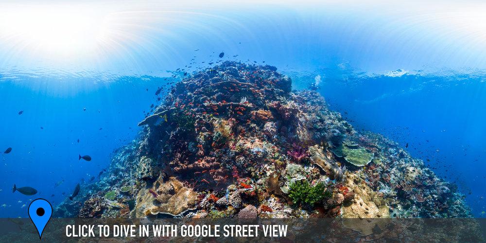 DOWNLOAD   - Batu Bolong, Komodo, indonesia Credit: THE OCEAN AGENCY / XL CATLIN SEAVIEW SURVEY