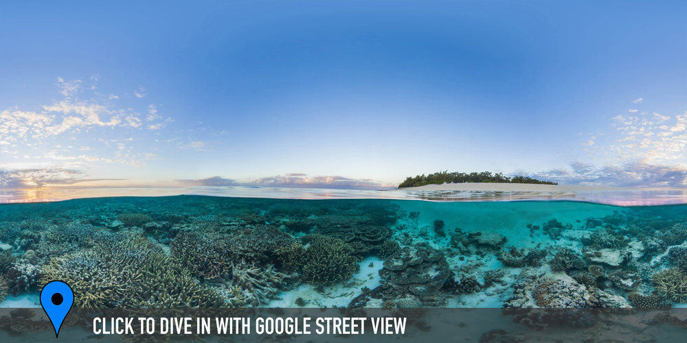 Wilson island, great barrier reef Credit: THE OCEAN AGENCY / XL CATLIN SEAVIEW SURVEY