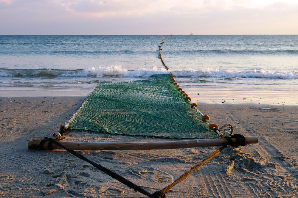download   - Fishing Net on Beach CREDIT: Brandon Puckett