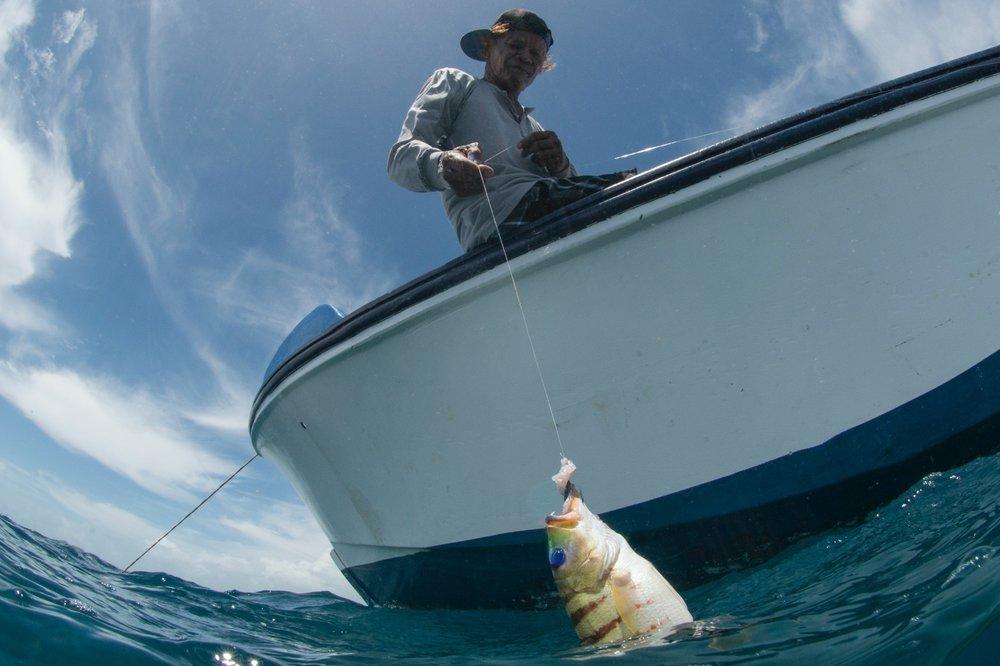 Download   - FISHERMAN IN PALAU CREDIT: THE OCEAN AGENCY