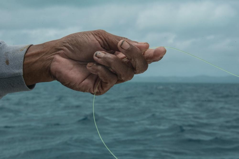 download   - fisherman, palau credit: the ocean agency