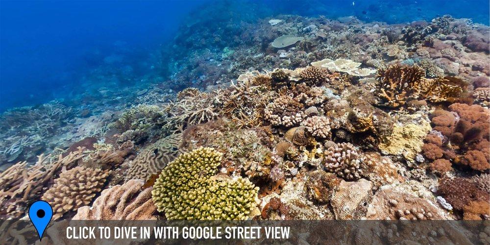 DOWNLOAD   - da bai sha, green island, taiwan Credit: THE OCEAN AGENCY / XL CATLIN SEAVIEW SURVEY