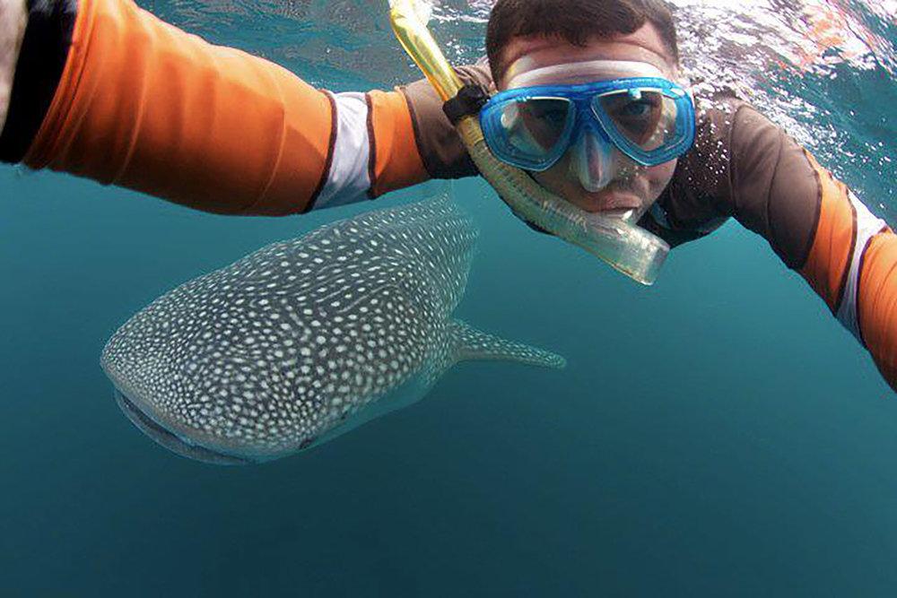 Whale Shark Selfie.jpg