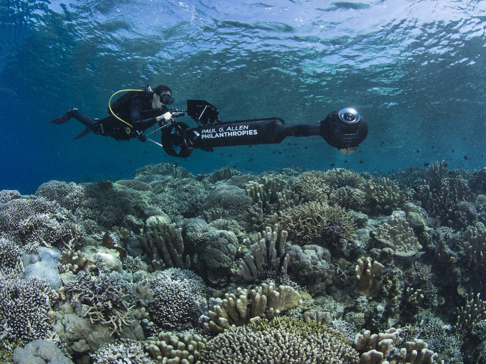 12 - the resurvey, funded by Paul G. Allen philanthropies CREDIT: The Ocean Agency / paul g. allen philanthropies