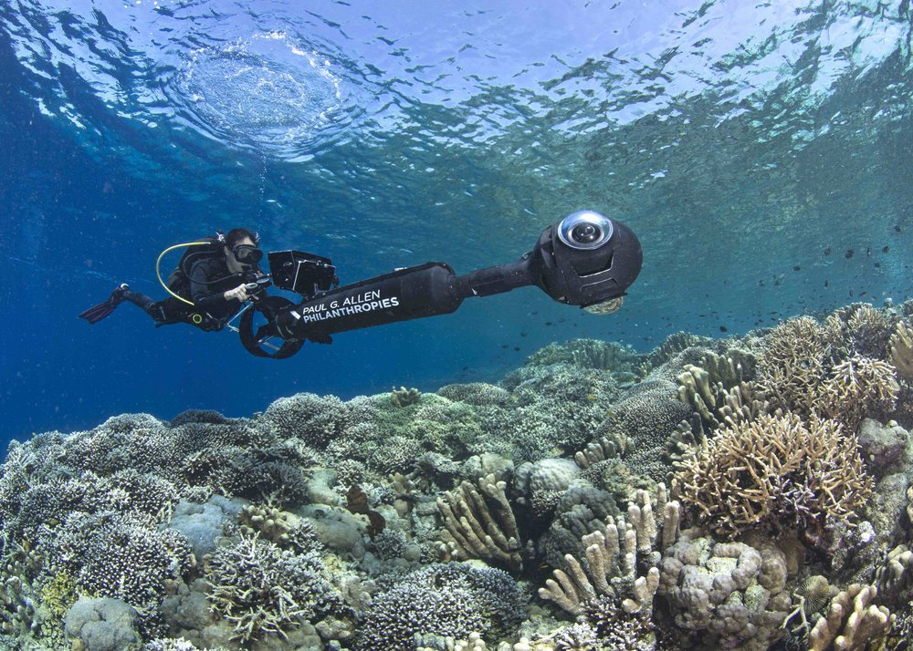 03 - A scientist conducts a reef survey CREDIT: The Ocean Agency / paul g. allen philanthropies