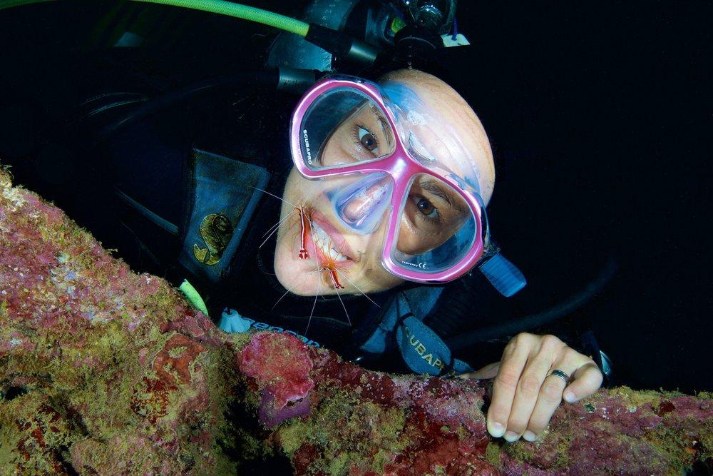 cleaner shrimp on teeth credit: grant thomas
