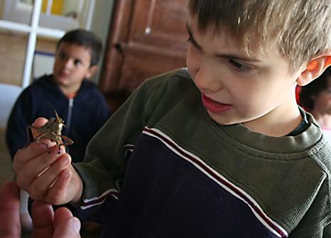 kid and frog.jpg